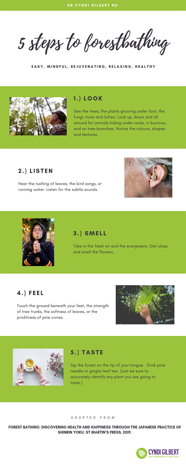 Forest Bathing Infographic
