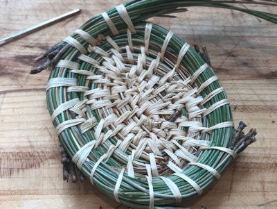 Pine needle basket in process beside a sewing needle