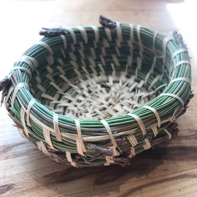 small, hand-sewn pine needle basket